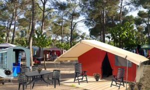 Rent a Safari Tent